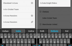 Google Now add Support for Cricket & IPL